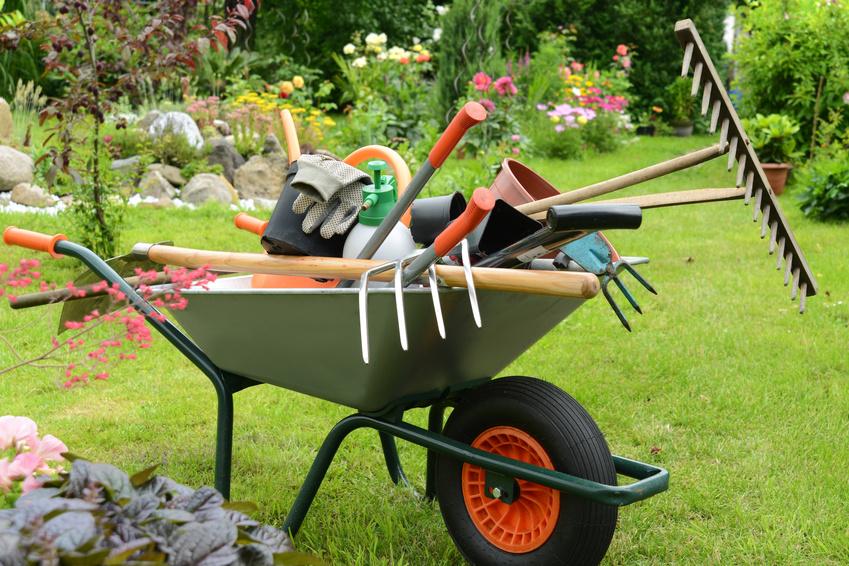 Der Garten - Hilfe bei allen Gelegenheiten